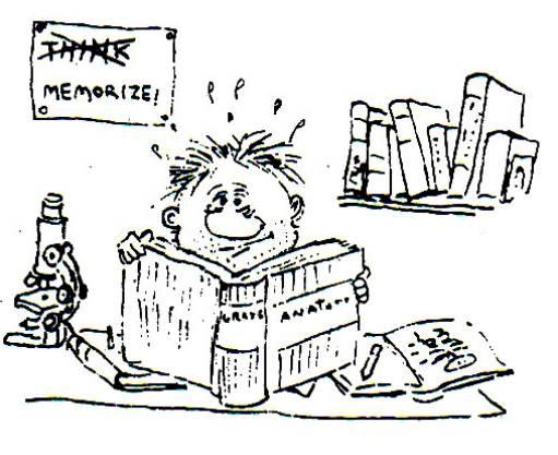 """Charge em que um menino está lendo um livro e acima dele há uma placa onde """"pensar"""" foi riscado e está escrito: """"memorize"""""""