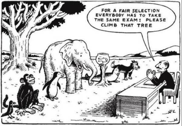 Charge com vários animais sendo submetidos a mesma avaliação: subir numa árvore